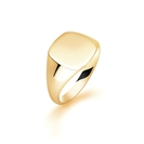 9ct Yellow Gold, Gents Signet Ring, Size W